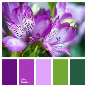 Color-Combinations-for-Summer-weddings-wilmington-uplighting-11