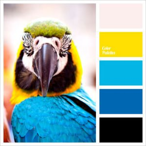 Color-Combinations-for-Summer-weddings-wilmington-uplighting-13